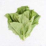 Lettuce Head (Green Romaine)
